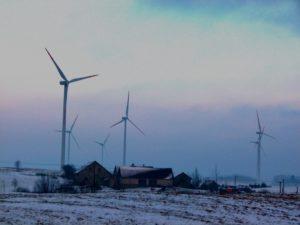 Na zdj. elektrownie wiatrowe w okolicach Gołdapi, w pobliżu zamieszkałych siedlisk (fot. Dariusz Morsztyn).
